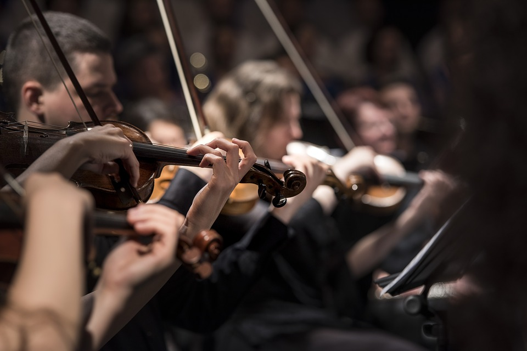 https://pixabay.com/en/classical-music-concert-macro-music-1838390/