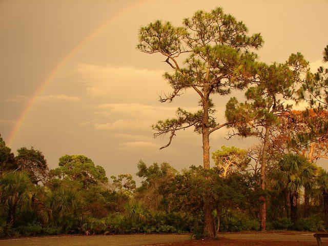 A rainbow over a cursed land. Still a better situation than a cult. (Credit: Matt Kelland, CC-SA license.)