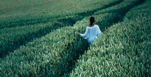 walking away through a field