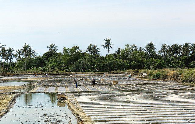 Salt farming. (Credit: Brian Evans, CC license.)
