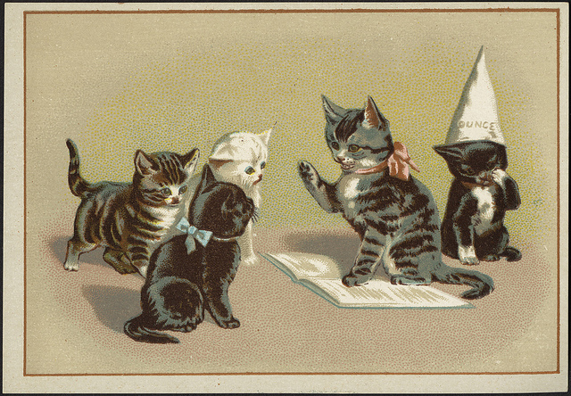 KITTENS MUST HAVE MORE KITTENS. These are actually vintage kittens from the Boston Public Library's Flickr feed--and if you're not following this feed, I don't know what's holding you back other than, perhaps, not using Flickr, I suppose. (Credit: Boston Public Library, CC license.
