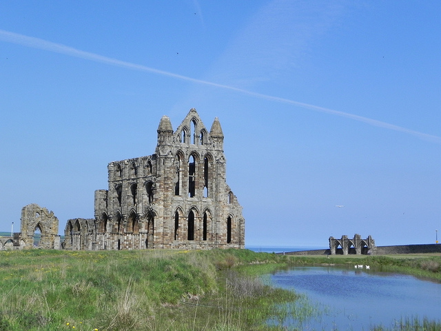 Something to think about next time you see those gorgeous old medieval churches, hmm? (InAweofGod'sCreation, CC-ND.) Whitby Abbey, a ruined Benedictine Abbey in North Yorkshire, England, established 657 CE, dissolved in 1540 and shortly thereafter falling into ruin. It was a victim of Henry VIII's dissolution project.