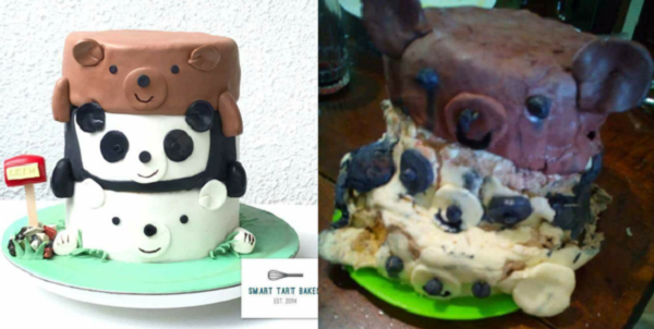 nailed it panda cake