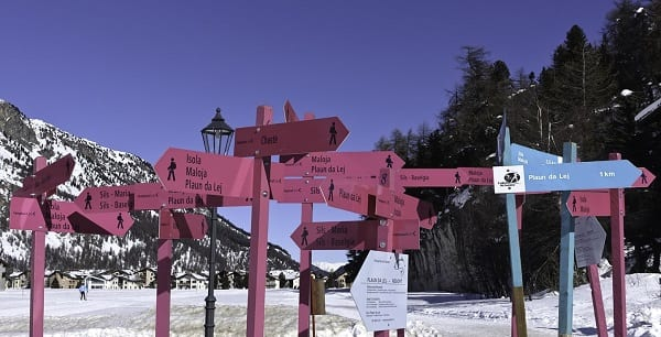 various pink and blue hiking signs advising trails on a mountain in switzerland