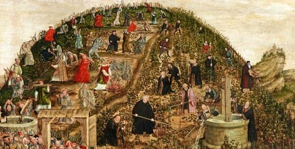 a bunch of monks labor on a vineyard