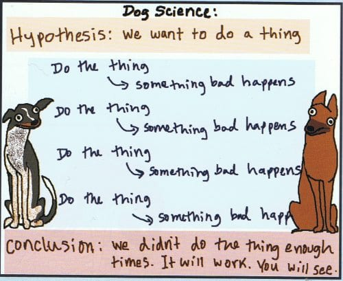 dog science just do the thing enough and it will work