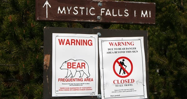 signs warning of bears in the area