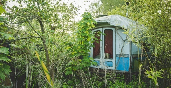 all we are is weeds around the abandoned bus