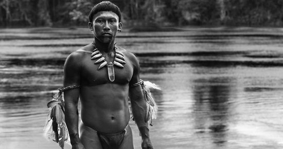 "Young Karamakate (Nilbio Torres) in ""Embrace of the Serpent"""