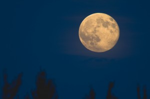 Super Moon photo by  Marie-Marthe Gagnon via creative commons license