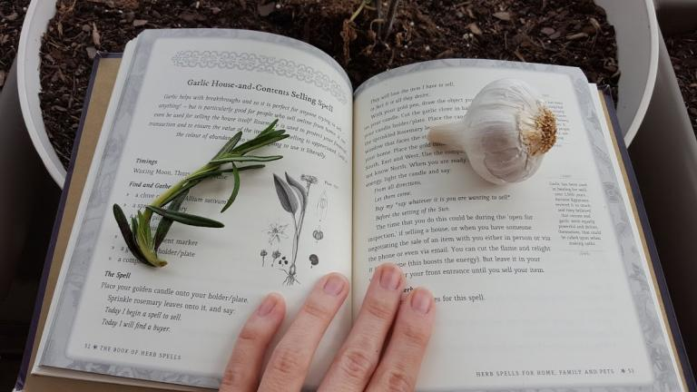The Book of Herb Spells | Molly Khan