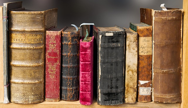Blogs about books were popular this year! CCO Pixabay