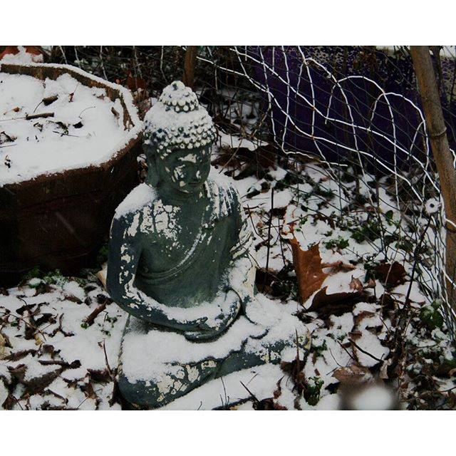 "After my ""Fun a Day"" project this January I let Mom pick one print as a gift. This one, ""Broken Plastic Buddha"", is the one she picked."