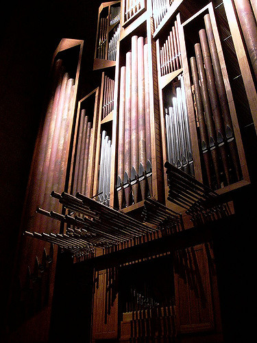 organ seattle