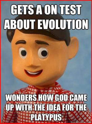 Davey and evolution
