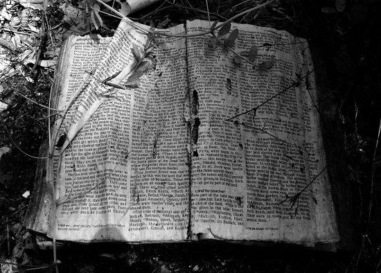 BibleAbandoned