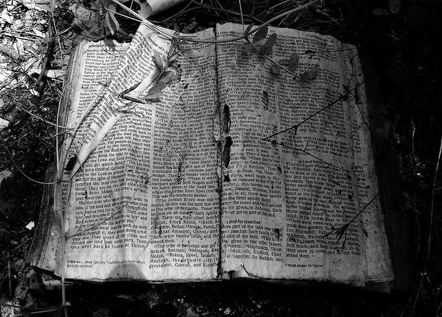 Abandoned Bible. Photo By: Patrick Feller.