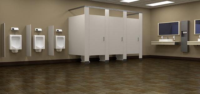 bathroom-453420_640
