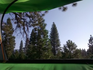 A fantastic view from our tree tent.
