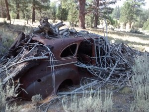 A decaying car in the middle of the forest. What's its' story?