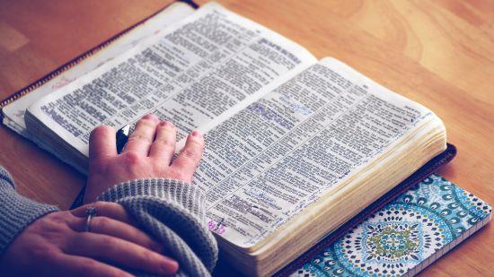 Bible550
