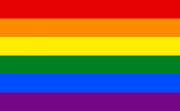 Gay_flag. enwikipedia.org