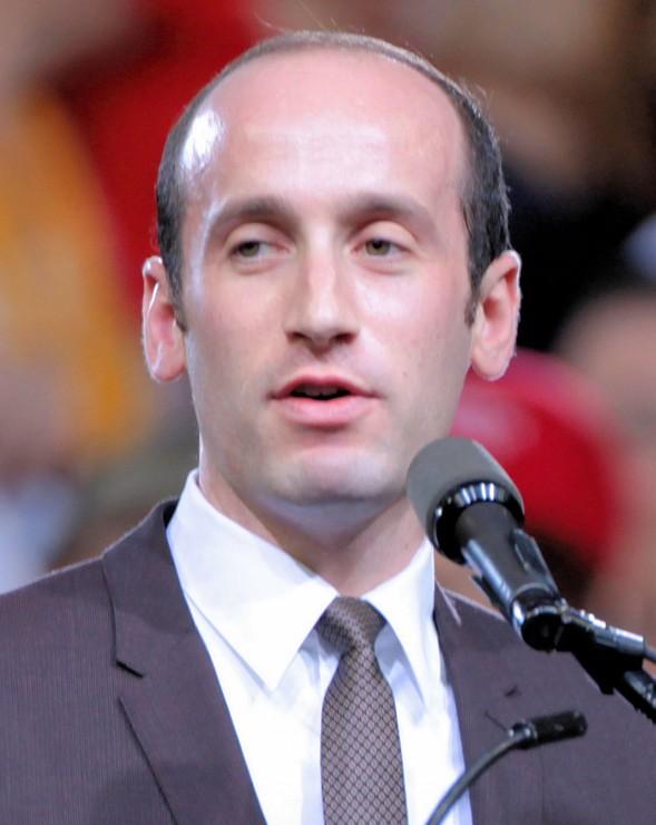 Stephen_miller_wikipedia