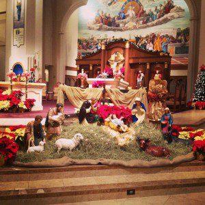 The nativity at my Parish.