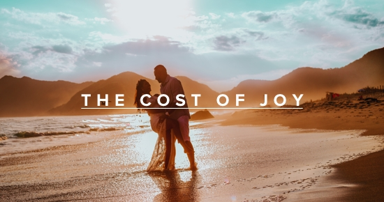 the cost of joy andy gill