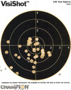 Target practice -- M 4 Carbine, 100 yards. (Personal photo.)