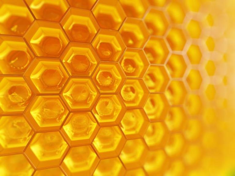 251920-honeycomb-800x600