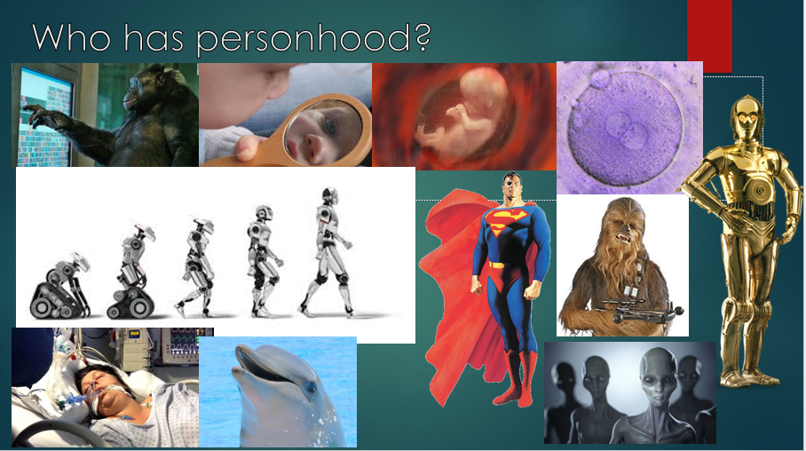 Which one of these entities has personhood?