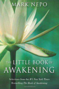 TheLittleBookofAwakening