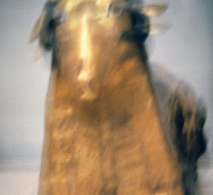 Blurred image of statue from the Antiquities Museum in Egypt. Photograph by Henry Karlson
