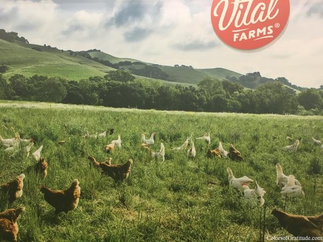 Vital Farms meadows-Convention Center Anaheim-Expo West-Favorites-organic-vegan-foodie-food-chocolate-natural-paleo-vegan-beauty-gratitude-expo west-
