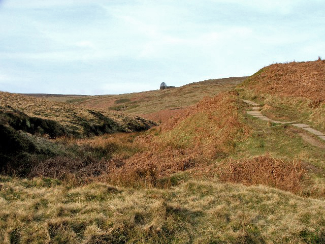 The_Climb_to_Top_Withens._-_geograph.org.uk_-_393405