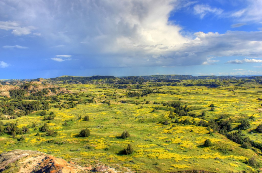 north-dakota-theodore-roosevelt-national-park-grasslands-and-prairie-landscape