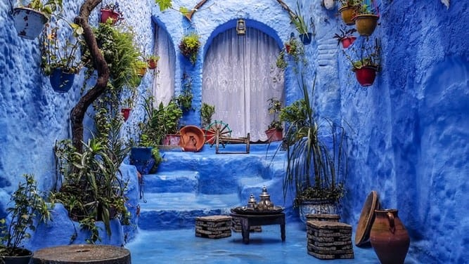 Image of a walkway up to a door, all painted blue, with hanging plants.