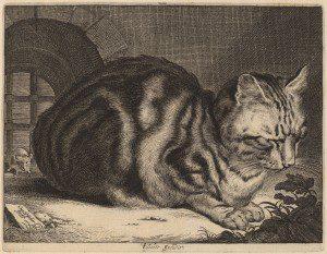Cornelis Visscher (Dutch, 1629 - 1662 ), The Large Cat, c. 1657, engraving on laid paper, Ailsa Mellon Bruce Fund