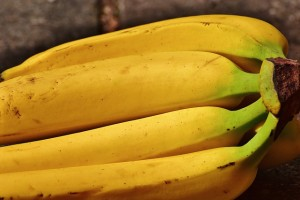 bananas-1646527_640
