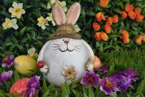 hare-1162971_640