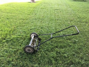 lawn-1812944_640