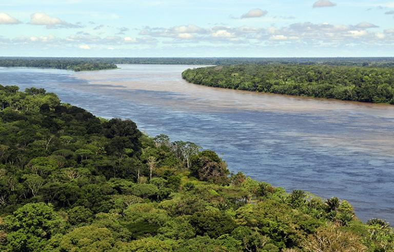 Greed will soon destroy the Amazon rainforest