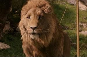 Aslan: Not a tame lion