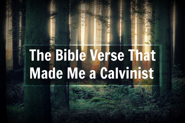 Image result for calvinist