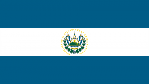 El Salvador's flag, the flag of the nation with the most at stake relative to TPS status.