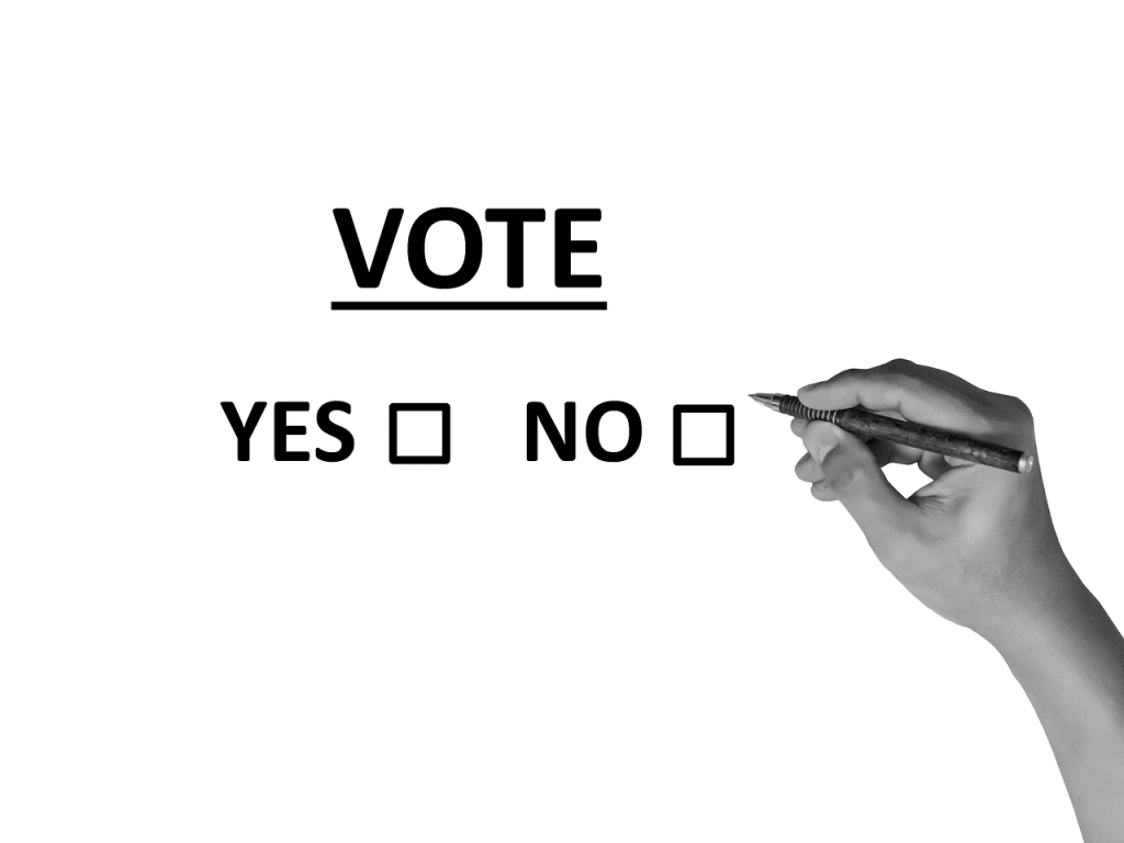 Voting is something we should all do, but many of us face real, structural, obstacles to exercising our right to vote. Credit for this image: Pixabay.