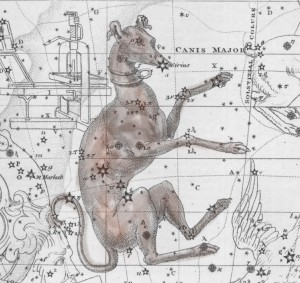 canis-major-3