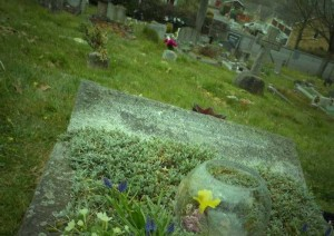 Dion Fortune's Grave, Glastonbury. Photo © Sorita d'Este, 2013