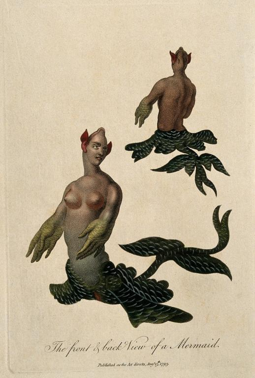 Mermaid, My Little Mermaid- Historic Mermaids are not Pretty, 18th century Mermaids
